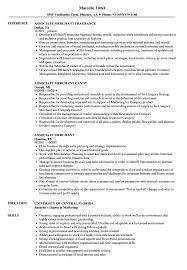 Associate Merchant Resume Samples Velvet Jobs