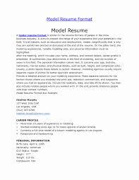 Example Of Model Resume Sarahepps Com