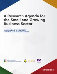 Agenda Business A Research Agenda For The Small And Growing Business Sector