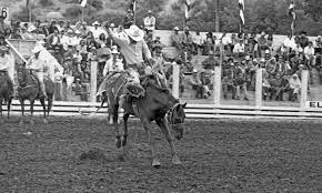 Marvin Joyce on horseback in the Saddle Bronc event Ellensburg, Rodeo 1975  - Ellensburg Heritage - Washington Rural Heritage