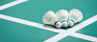 """Badminton""的图片搜索结果"