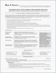 The Best Resume Ever New Customer Service Description For Resume Elegant 48 Customer Service