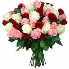Image result for pictures of bunches of flowers