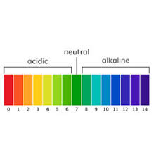 Acid Alkaline Water Chart Ph Scale Alkaline Water Vector Images 56