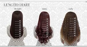 6a Brazilian Hair Full Lace Human Hair Wigs Brazilian Body
