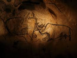 line drawing of fighting rhinoceroses in chauvet cave in southern france which contains the oldest known cave art in the world