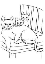 Immagini Da Colorare Dei Gatti Foto Dei Cani E Gatti Disegni Da