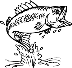 Small Picture Cathing Bass Fish Coloring Pages Cathing Bass Fish Coloring Pages