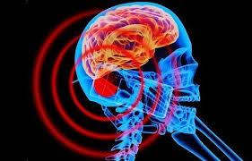 「スマホ 電磁波による被害」の画像検索結果
