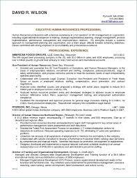 Desk Attendant Sample Resume Best Flight Attendant Resume Examples From Fresher Cabin Crew Resume