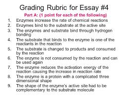 custom law essays uk custom essay basics structure and other  custom law essays uk jpg