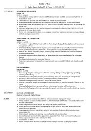 Editor Resume Sample Photo Editor Resume Samples Velvet Jobs 10