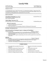 Resume For Analyst Job Example Of Resume Work Experience Amazing Examples For High School 69