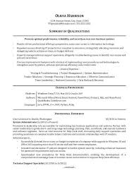 samole resume it professional resume sample monster com