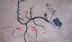ls1 wire harness swap data wiring diagram \u2022 LS1 Standalone Wiring Harness ls1 swap wiring harness trusted wiring diagrams u2022 rh ohmama co ls1 wiring harness modification ls1 wiring harness plugs on