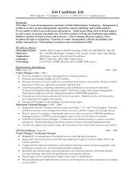 Information Technologynior Project Manager Resume Sample