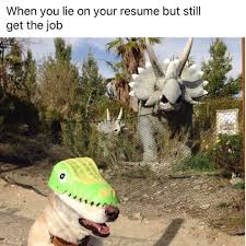When You Lie On Your Resume When You Lie On Your Resume But Still Get The Job Funny 2