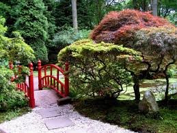 Small Picture Japanese Maple Garden Design Ideas Small Japanese Garden Design
