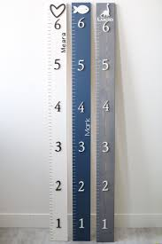 Wood Growth Chart Ruler 3d