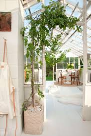 A Greenhouse Makeover with 'The Frame' + Get The Look - Emily Henderson