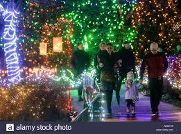 Botanical Gardens Christmas Lights 2018 Christmas Lights Vandusen Garden Stock Photos Christmas