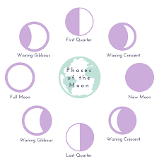 Menstrual Cycle Moon Chart Lunar Cycles Vs Menstrual Cycles Your Period The Full