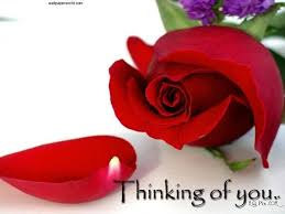 Flowers Love Quotes Enchanting Beautiful Flowers Love Quotes