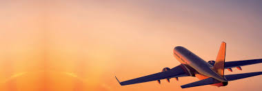 Image result for Flight