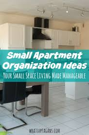 In a small apartment organization ideas are very helpful! These are some  great tips,