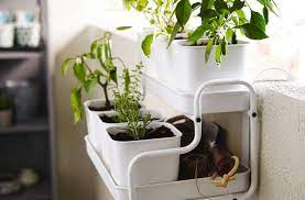 essentials for small space gardens