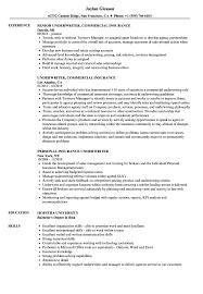 Insurance Underwriter Resume Samples Velvet Jobs