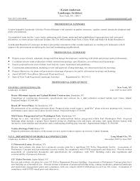 Objective Summary Resume Summary Ideas For Resume Incredible Excellent Resume Objective 65