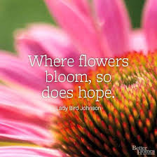 Quotes About Flowers Blooming Interesting 48 Fresh Quotes About Flowers Blooming Figures Inspirational