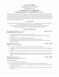 Hr Resume Objective Unique Spa Manager Cover Letter Fine Resume Objective It Manager Position