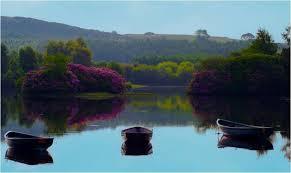 صور انعكاس الماء على المناظر images?q=tbn:ANd9GcS