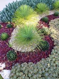 Small Picture Best 25 Desert landscaping backyard ideas only on Pinterest Low