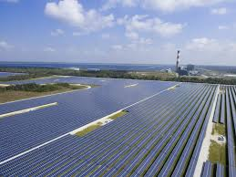 Florida Power And Light Manatee Viewing Fpl Plans Worlds Largest Solar Battery System In Manatee