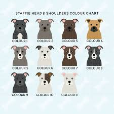 Staffy Colour Chart Staffie Circle Print Custom Dog Print Personalised Staffy Gift Dog Name Custom Childrens Nursery Art Staffordshire Terrier Picture