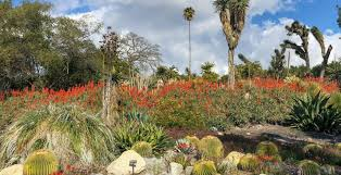 the best botanical gardens parks for