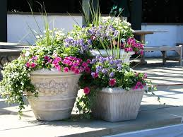 How to make flower arrangements in patio container