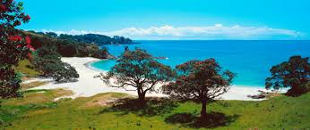 Image result for images of Waiheke Island