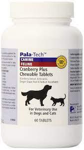 20 Best Dog Multivitamins ideas   dog supplements, dog multivitamin, pet  supplements