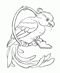 6cpooo9cE parrot outline coloring home on parrot outline template