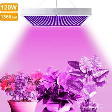 Best Commercial Led Grow Lights 2018 Top 5 Best 120 Watt Led Grow Lights Review For Your Plants