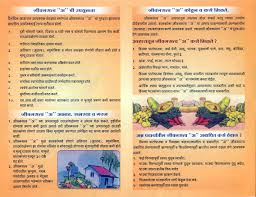 Vitamin Chart In Marathi Vitamins Chart Pdf In Marathi Bedowntowndaytona Com