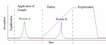 Proteomics Protein Separations Chromatography Ion Exchange