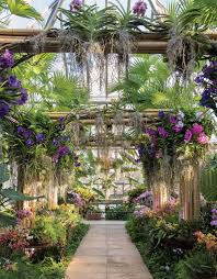 escape to the tropics at the chicago botanic garden orchid show