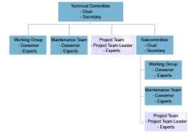 Iec Standards Development Pt Leader Roles And Responsibilities