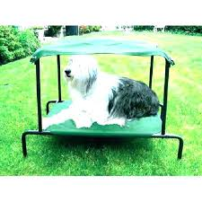 outdoor dog bed elevated outdoor dog bed raised extra large with canopy diy outdoor dog bed