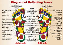 Tcm Foot Reflexology Chart Reflexology Association Of Canada